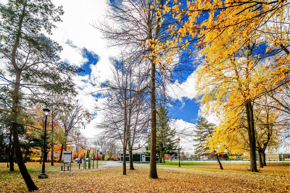 parc du bois des pins Urban Workout   Saint Hyacinthe
